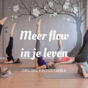 Meer flow in je leven