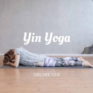 Yin yoga online les