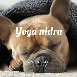 Yoga nidra - online les